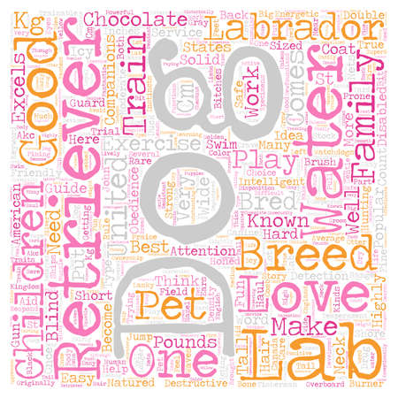 chocolate labrador 33 text background wordcloud concept Illustration