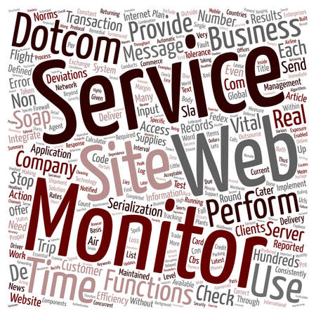 24x7: Can Web Service Companies Do Without 24x7 Dotcom Monitor support text background wordcloud concept