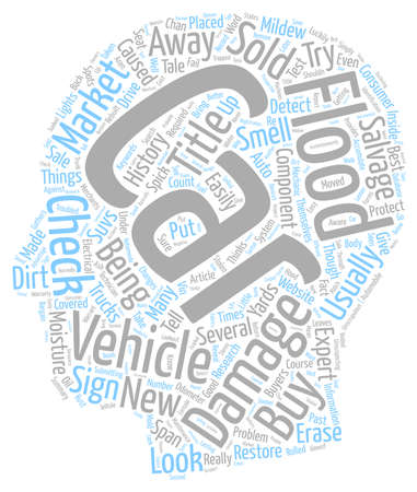 Do Not Buy Flood Damaged Cars text background wordcloud concept Illustration