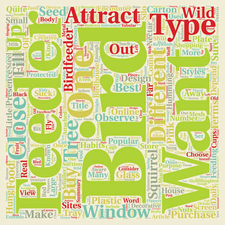 Different Types of Bird Feeders text background wordcloud concept