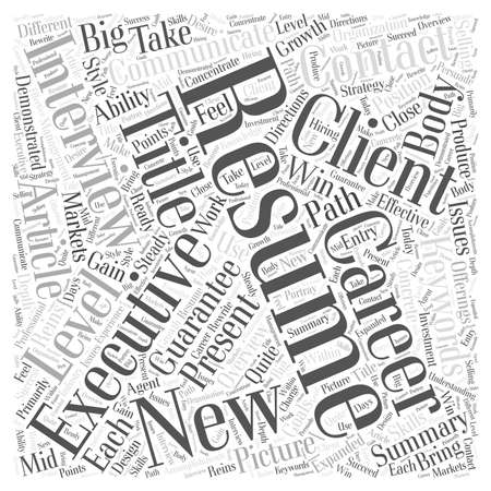 reins: Executive Resumes Word Cloud Concept