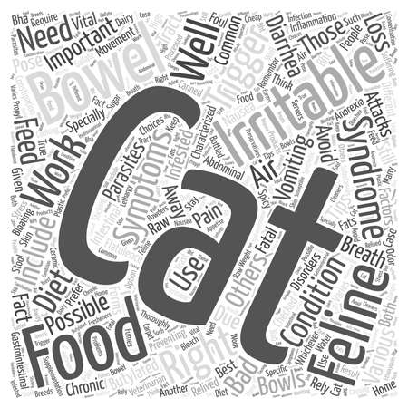 irritable bowel syndrome: feline irritable bowel syndrome Word Cloud Concept Illustration