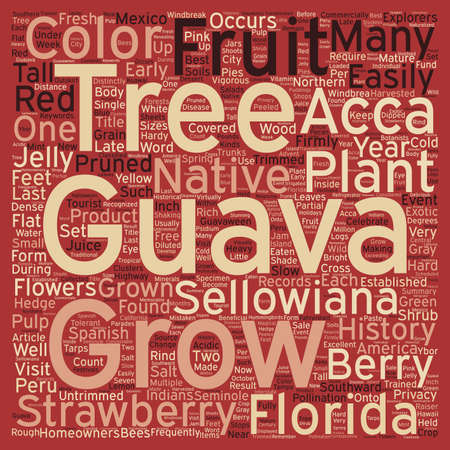 southward: History Of The Guava text background wordcloud concept Stock Photo