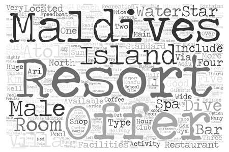 budgets: Brief Review Of The Top Maldives Holiday Resorts Part text background word cloud concept Stock Photo
