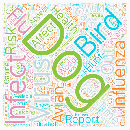 bird flu: Are Dogs Safe From the Bird Flu text background wordcloud concept