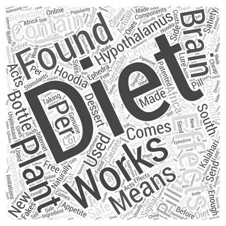effective hoodia diet pill Word Cloud Concept