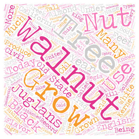 History Of Walnuts text background wordcloud concept