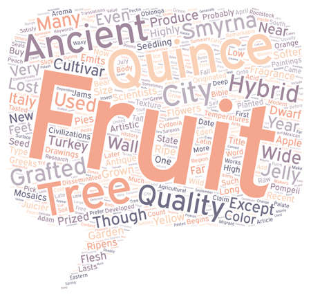 History Of Quince text background wordcloud concept Illustration