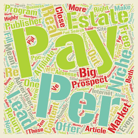 stealthy: How Affiliates Content Publishers Can Make A Stealthy Income With Pay Per Lead text background wordcloud concept.