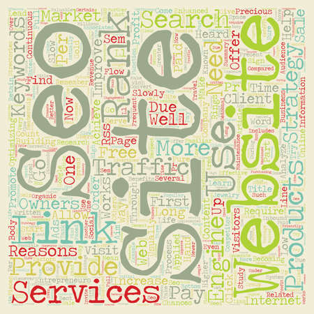 How SEO Services Can Provide Traffic For Your Website text background wordcloud concept