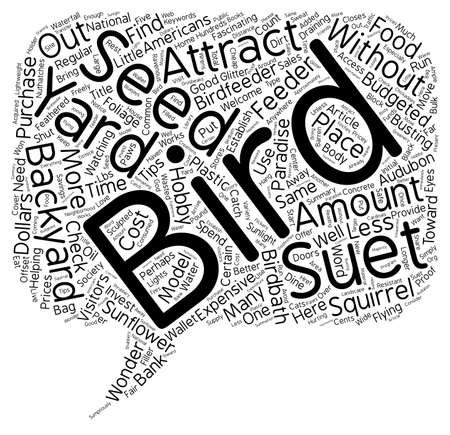 How to Attract Birds to Your Backyard Paradise For Less Than text background wordcloud concept. 向量圖像