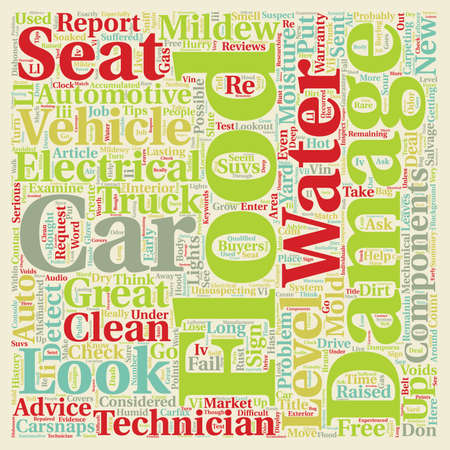 salvage yards: How To Detect A Flood Damaged Vehicle text background wordcloud concept Stock Photo