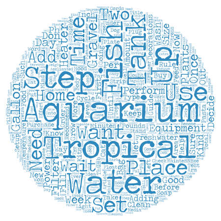 fish tank: How To Setup A Freshwater Tropical Fish Tank text background wordcloud concept