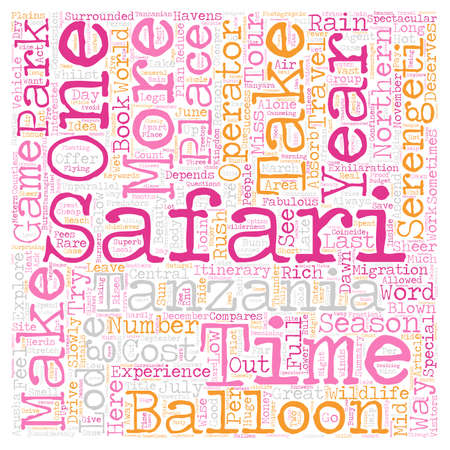 Safari text word cloud concept