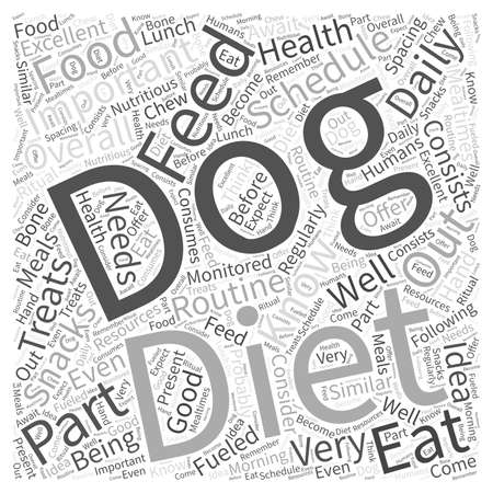 fueled: Importance of a Feeding Schedule in Your Dogs Diet Word Cloud Concept