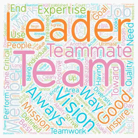 Leadership Teamwork text background wordcloud concept