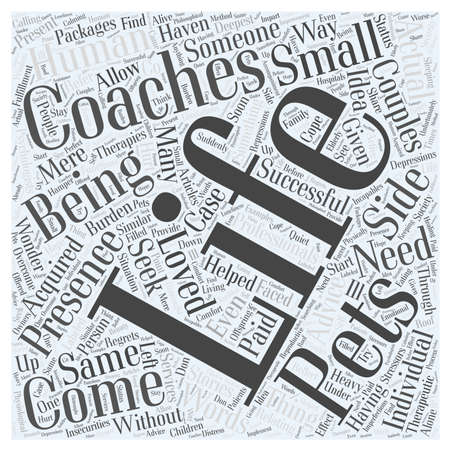 come in: Life Coaches Come in Small Packages Word Cloud Concept