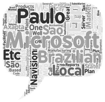 Microsoft Navision Implementation Integration Customization Sao Paulo ERP market notes. Ilustração