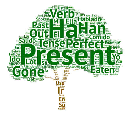 Learn Spanish Lesson and the Present Perfect Tense Word Cloud Concept Text Background