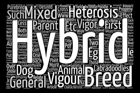 In Resolve to Leave the Office Earlier text background word cloud concept Vektoros illusztráció