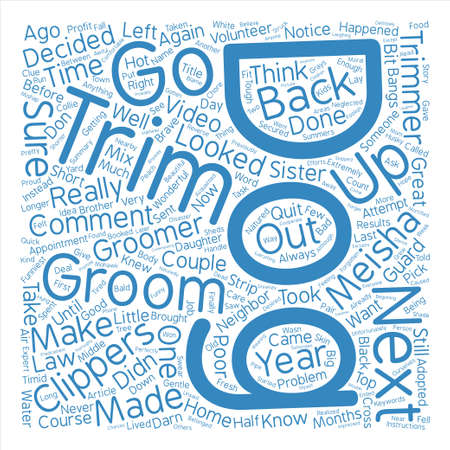 How NOT to Groom Your Dog Word Cloud Concept Text Background Illustration