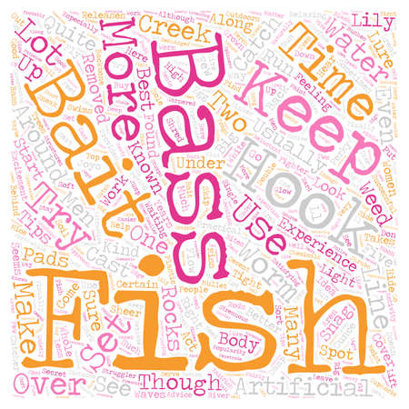 bass fishintips 1 text background wordcloud concept Illustration