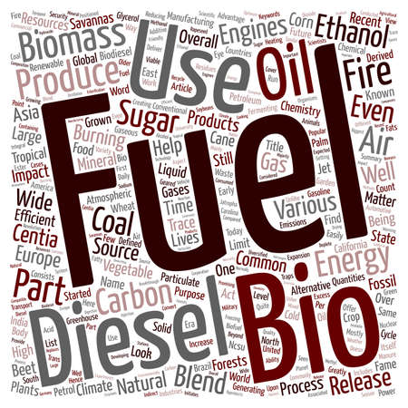 quantities: Bio Fuels The Fuel Of The Future text background wordcloud concept