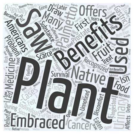 palmetto: beneifts of saw palmetto Word Cloud Concept