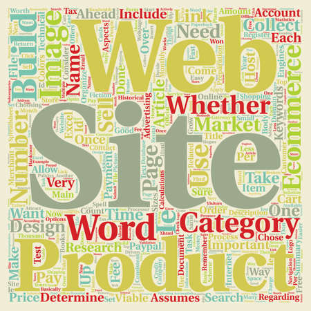 web site: Build Ecommerce Web Site text background wordcloud concept