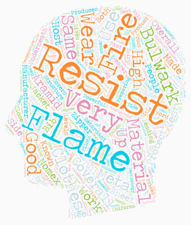Bulwark Flame Resistant Wear text background wordcloud concept