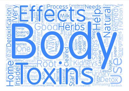 home remedy for body detox Word Cloud Concept Text Background Illusztráció