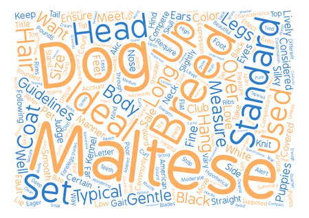 Does Your Maltese Stand Up to the Supposed Standard Word Cloud Concept Text Background