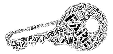 How Much Did You Pay For Your Plane Ticket text background word cloud concept  イラスト・ベクター素材