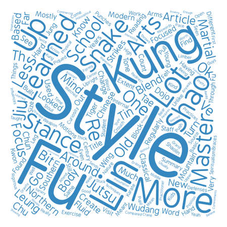 My Kung Fu Master Is Years Old Word Cloud Concept Text Background