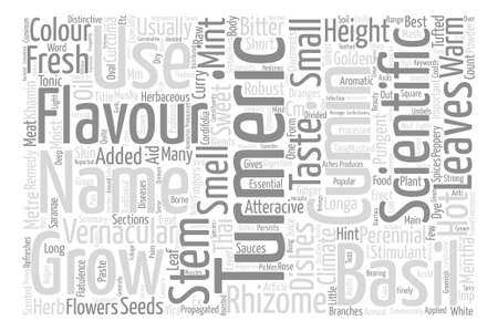 khamin: Spices Turmeric Cumin Mint And Sweet Basil Word Cloud Concept Text Background
