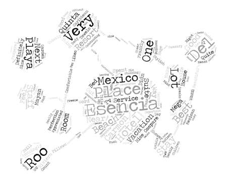 The Esencia Playa Del Carmon Quinta Roo Mexico Word Cloud Concept Text Background
