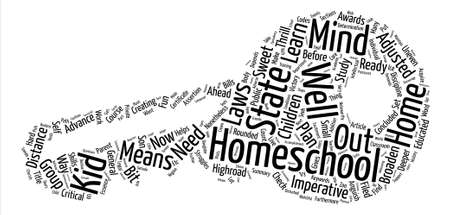 How To Homeschool Your Son Or Daughter Word Cloud Concept Text Background