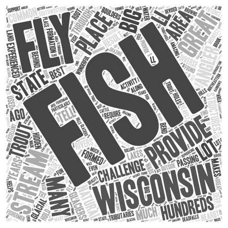 fishing area: Fly fishing wisconsin Word Cloud Concept Illustration
