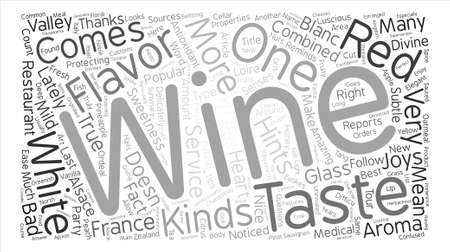 joys: The Joys Of White Wine text background word cloud concept Illustration