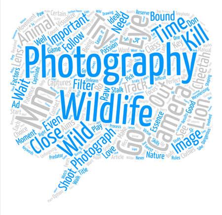 野生動物写真単語クラウド コンセプト テキストの背景  イラスト・ベクター素材
