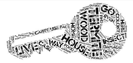 Insect Destroyers of the Underworld text background word cloud concept