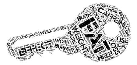 importantly: The Skinny on Fat Burners text background word cloud concept