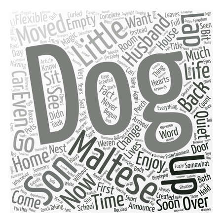 Maltese Magic Word Cloud Concept Text Background