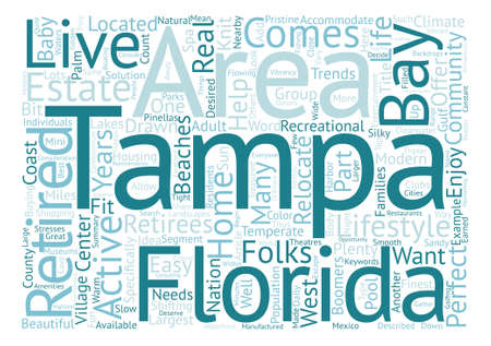 Retirement Homes in Tampa Bay Word Cloud Concept Text Background