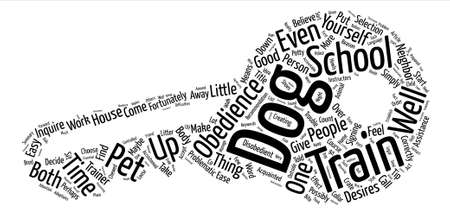 HOW TO CHOOSE A GOOD OBEDIENCE SCHOOL FOR YOUR DOG Word Cloud Concept Text Background Stock Illustratie