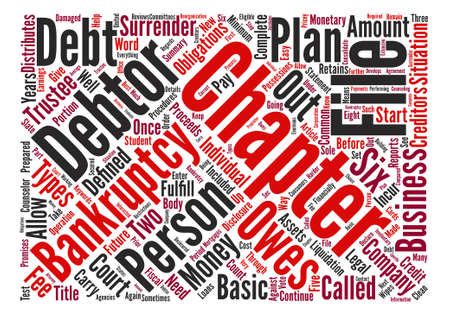 owes: Types Of Debtor Bankruptcy Word Cloud Concept Text Background