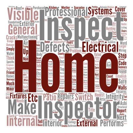 What Does a Home Inspector Do Word Cloud Concept Text Background Illustration