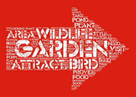 What is the Right Garden Style for You Wildlife Garden Word Cloud Concept Text Background Illustration