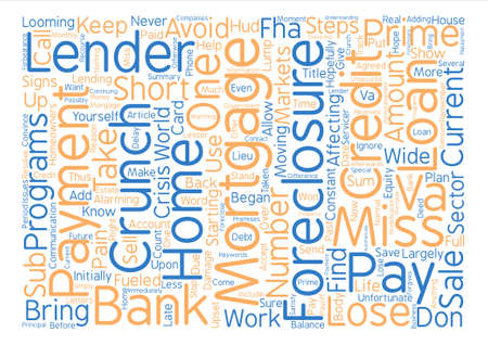 Save Your Home From The Credit Crunch Word Cloud Concept Text Background Illustration