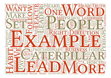 implied: Lead by the Right Example Word Cloud Concept Text Background Illustration